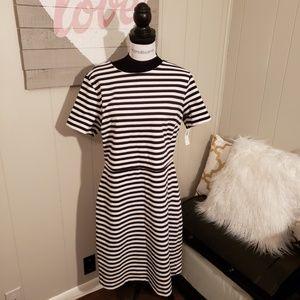 NWT Black and White Striped Sheath Dress Tall